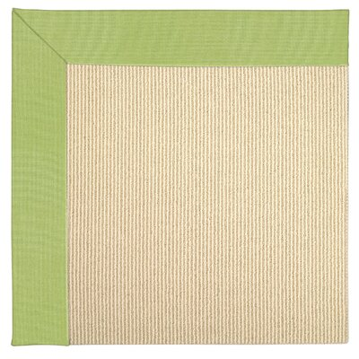 Zoe Machine Tufted Parakeet Indoor/Outdoor Area Rug Rug Size: Square 10