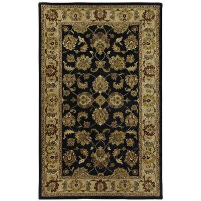 Orinda Mirza Black/Beige Area Rug Rug Size: Rectangle 7' x 9'