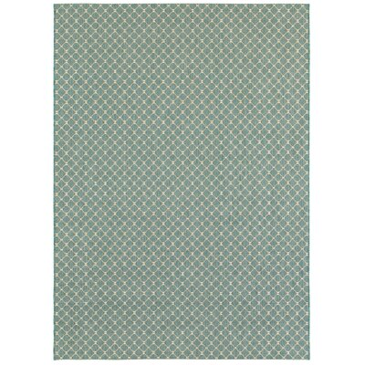 Hoelscher Aquamarine Indoor/Outdoor Area Rug Rug Size: 53 x 74