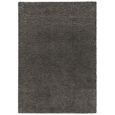 Loera Gray Area Rug Rug Size: 53 x 74