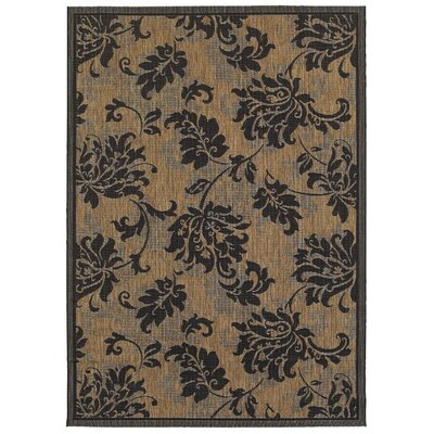 Fair Haven Black Indoor/Outdoor Area Rug Rug Size: 53 x 74