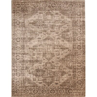 Tan Area Rug Rug Size: Rectangle 93 x 12