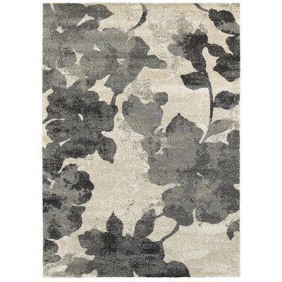 Horvath Gray Area Rug Rug Size: 53 x 74