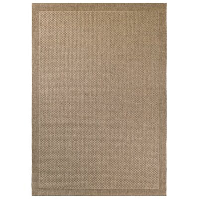Hoffman Brown Indoor/Outdoor Area Rug Rug Size: 2 x 4