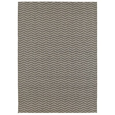 Dunmire Gray Indoor/Outdoor Area Rug Rug Size: 53 x 74