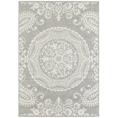 Benson Light Gray Indoor/Outdoor Area Rug Rug Size: 53 x 74