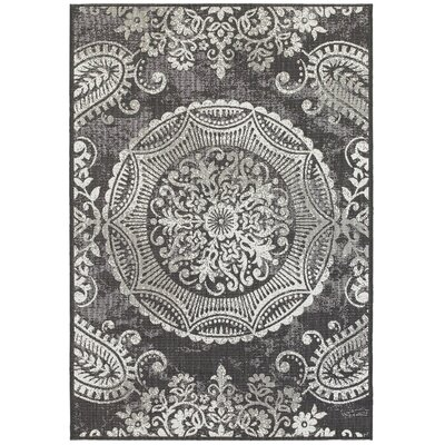 Frederica Dark Gray Indoor/Outdoor Area Rug Rug Size: 53 x 74