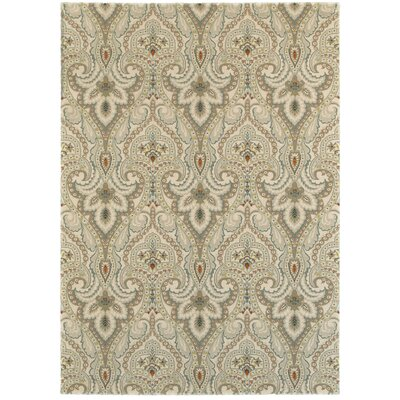 Kingston Area Rug Rug Size: 53 x 74