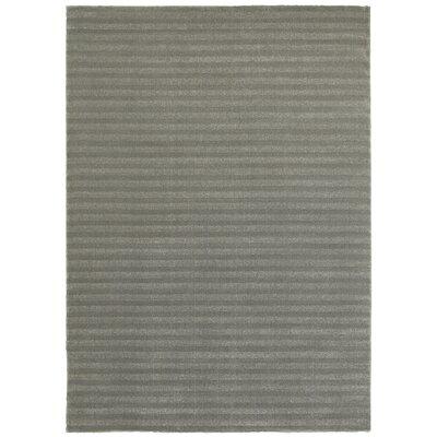 Delmar Gray Area Rug Rug Size: 53 x 74