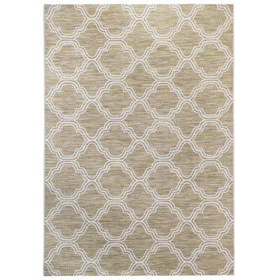 Beige/White Indoor/Outdoor Area Rug Rug Size: 53 x 74