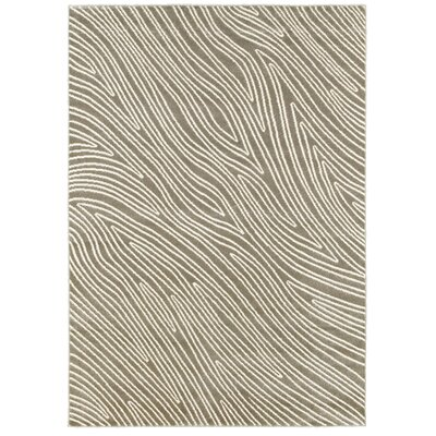 Walden Gray Area Rug Rug Size: 53 x 74