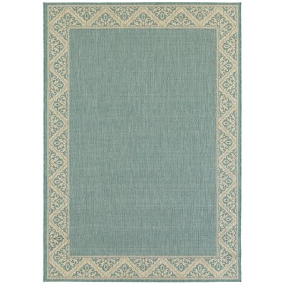 Barnard Aquamarine Indoor/Outdoor Area Rug Rug Size: 53 x 74