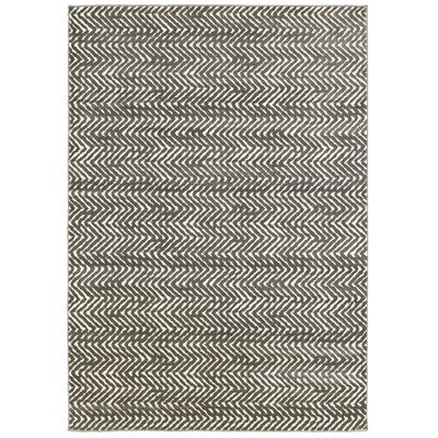 Morgan Gray Area Rug Rug Size: 53 x 74