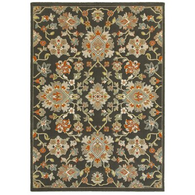 Hottinger Gray/Orange Area Rug Rug Size: 53 x 74