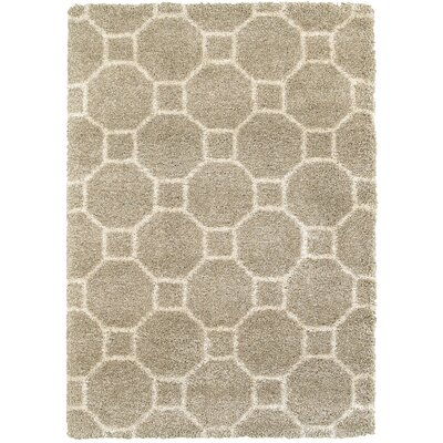 Hampden Light Gray Area Rug Rug Size: 53 x 74