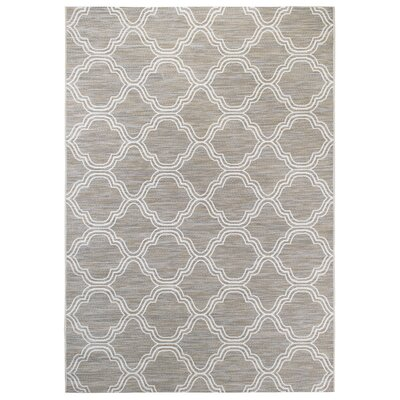 Gray/White Indoor/Outdoor Area Rug Rug Size: Rectangle 711 x 101