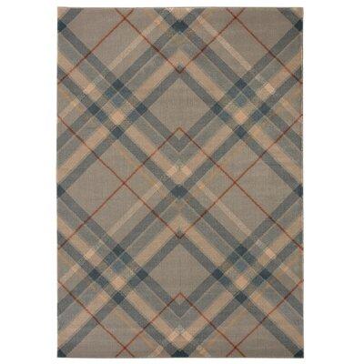 Ramiro Beige/Gray Area Rug Rug Size: 710 x 10