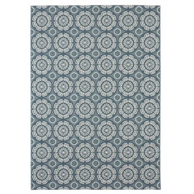 Norwood Blue/Gray Indoor/Outdoor Area Rug Rug Size: 53 x 74