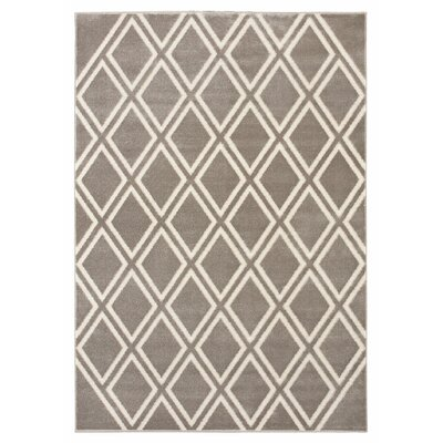 Sartin Light Gray/Beige Area Rug Rug Size: 53 x 74