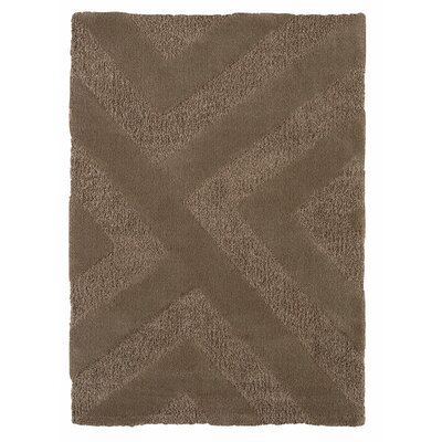 Loggins Brown Area Rug Rug Size: 53 x 74