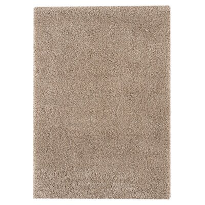 Durso Light Brown Area Rug Rug Size: 53 x 74