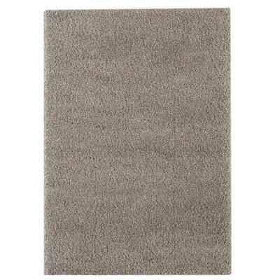 Delano Gray Area Rug Rug Size: 710 x 10