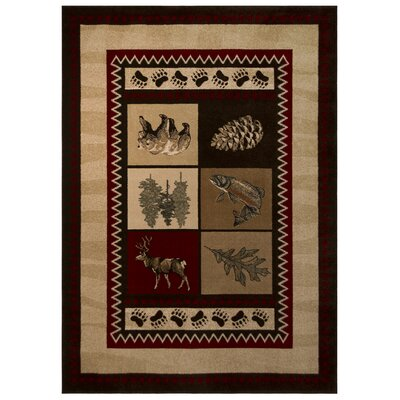Sperry Beige Area Rug Rug Size: 711 x 101