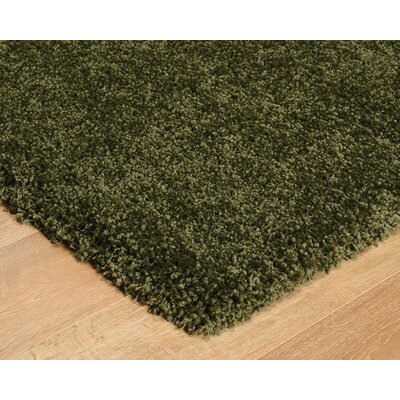 Green Area Rug Rug Size: Runner 28 x 711