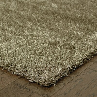 Peloquin Brown Area Rug Rug Size: 53 x 75