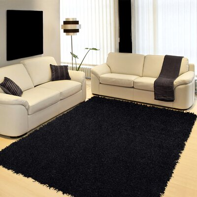 Northolt Black Area Rug Rug Size: 2 x 4