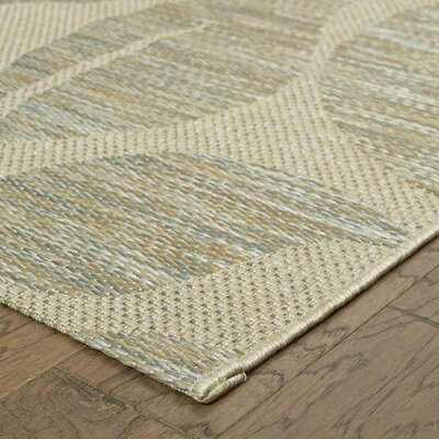 Gray Indoor/Outdoor Area Rug Rug Size: 53 x 74