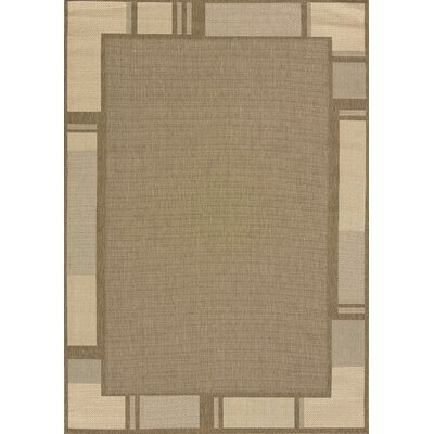 Solarium Brown Terrace Indoor/Outdoor Rug Rug Size: 53 x 76