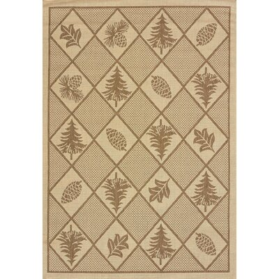 Solarium Pine Brown Indoor/Outdoor Rug Rug Size: 53 x 76