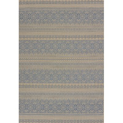 Solarium Blue Alfresco Indoor/Outdoor Area Rug Rug Size: 53 x 76