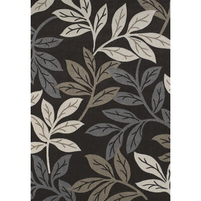 Townshend Brown Freestyle Rug Rug Size: 53 x 76
