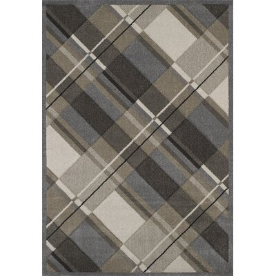 Townshend Grey Journey Rug Rug Size: 53 x 76