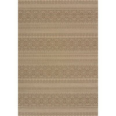 Solarium Brown Alfresco Indoor/Outdoor Area Rug Rug Size: 710 x 106