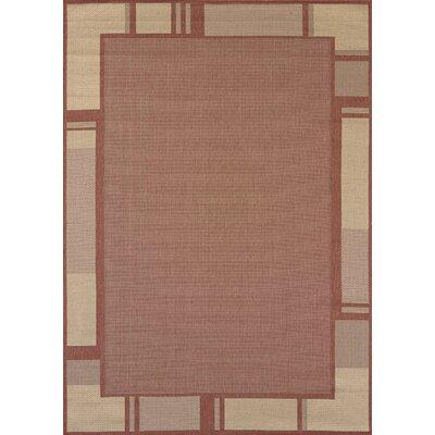 Solarium Terracotta Terrace Indoor/Outdoor Rug Rug Size: 53 x 76