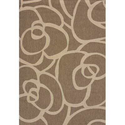Solarium Brown Veranda Indoor/Outdoor Rug Rug Size: 53 x 76