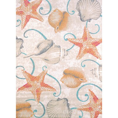 Keyla Star and Shells Area Rug Rug Size: Rectangle 27 x 311