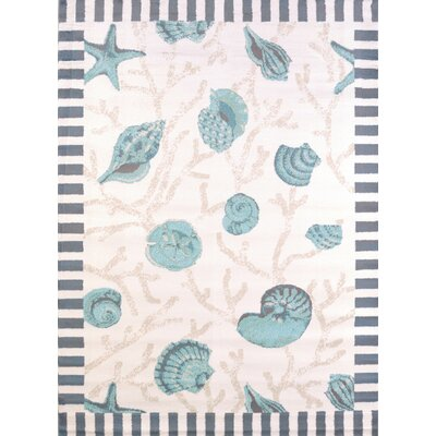 Regional Concepts Shells Blue Area Rug Rug Size: Rectangle 53 x 72