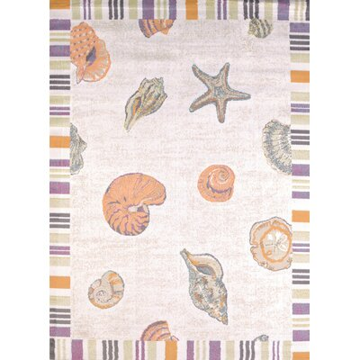 Regional Concepts Sand And Shells Area Rug Rug Size: Rectangle 53 x 72