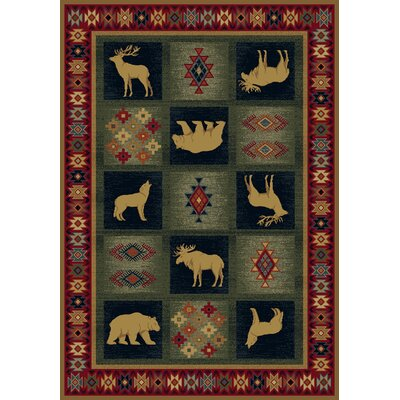 Genesis Green/Red Dakota Area Rug Rug Size: 53 x 76