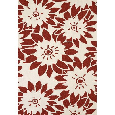 Atrium Handmade Red Indoor/Outdoor Area Rug Rug Size: 5' x 7'6