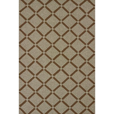 Atrium Handmade Brown Indoor/Outdoor Area Rug Rug Size: 710 x 910