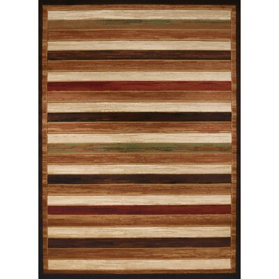 Studio Brown Area Rug Rug Size: 53 x 72
