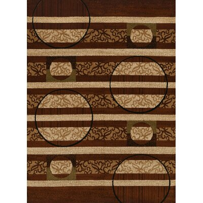 Studio Brown Area Rug Rug Size: Runner 111 x 72