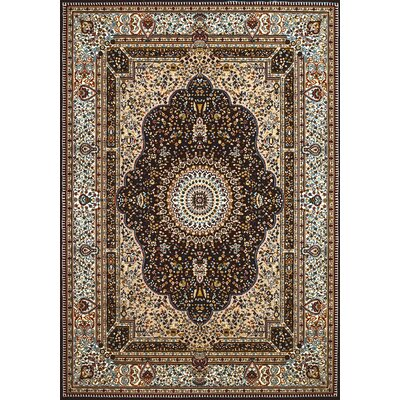 Antiquities Dark Brown Area Rug Rug Size: 53 x 72