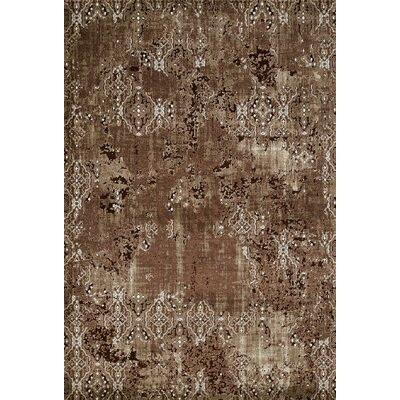 Rarity Brown Area Rug Rug Size: 53 x 72