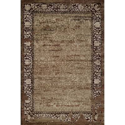 Relic Brown Area Rug Rug Size: 53 x 72